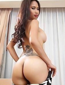 Busty Asian babe Stella